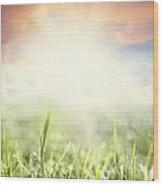 Spring Sun Wood Print
