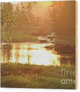 Spring Sunset Wood Print by Alana Ranney
