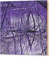 Spring Swamp Wood Print by Michael Sokalski