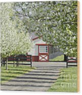 Spring Time At The Farm Wood Print