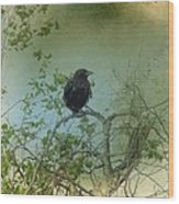 Spring Tree And Crow Wood Print