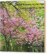Spring Tree Blossoms Wood Print