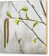 Spring Tree Branch Wood Print