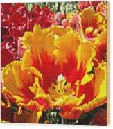 Spring Tulip Flowers Art Prints Yellow Red Tulip Wood Print