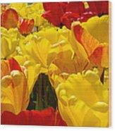 Spring Tulips Art Prints Yellow Red Tulip Flowers Wood Print