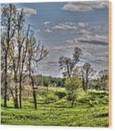 Spring Valley Wood Print