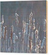 Spring Whisper... Wood Print by Nina Stavlund