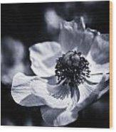 Spring White Dancing Wood Print
