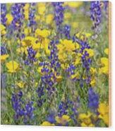 Spring Wildflower Bouquet  Wood Print