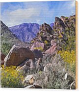 Spring Wildflowers At Anza Borrego Wood Print