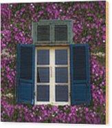 Spring Window Wood Print