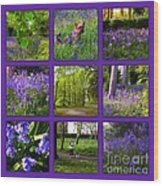 Spring Woodland Picture Window Wood Print