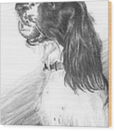 Springer Spaniel Playing Fetch Pencil Portrait Wood Print