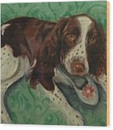 Springer Spaniel With Shoe Wood Print