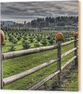 Springhetti Road Pumpkins Wood Print