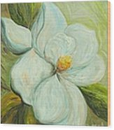 Spring's First Magnolia 2 Wood Print