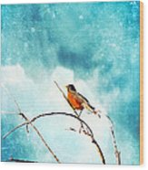 Spring's First Robin Wood Print