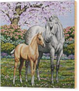 Spring's Gift - Mare And Foal Wood Print by Crista Forest