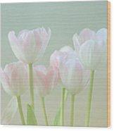 Spring's Pastels Wood Print by Kim Hojnacki