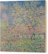 Springtime At Giverny Wood Print by Claude Monet
