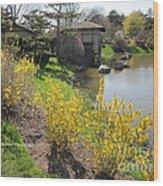 Springtime At The Japanese Gardens Wood Print