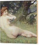 Springtime Wood Print by Charles Lenoir