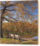 Springtime Fire Wood Print by Debra and Dave Vanderlaan