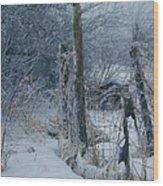 Springtime Icestorm Wood Print