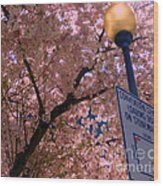 Springtime In Charlotte Wood Print by Lydia Holly