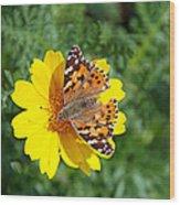 Springtime In Hydra Island Wood Print