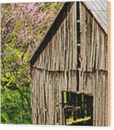 Springtime In Kentucky Wood Print