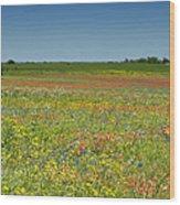 Springtime In Texas 2 Wood Print
