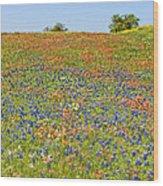Springtime In Texas 5 Wood Print