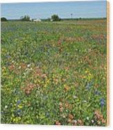 Springtime In Texas 6 Wood Print
