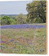 Springtime In Texas Wood Print