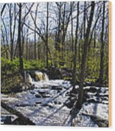 Springtime In The Mountains Wood Print