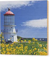 Springtime Lighthouse Wood Print