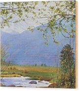 Springtime Moraine Park Wood Print