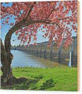 Springtime On The River Wood Print