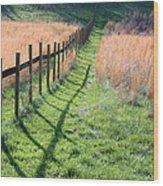 Springtime Pasture Wood Print