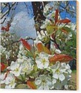 Springtime Pear Blossoms - Hello Spring Wood Print