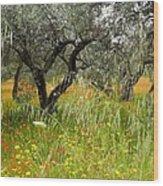 Springtime Sicily Wood Print