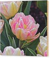 Springtime Sprites -- Parrot Tulips Wood Print