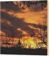 Springtime Sunset Wood Print