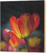 Springtime Tulips Digital Painting Wood Print