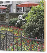 Springtime Tulips In Cologne Germany Wood Print