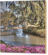Springtime View Wood Print