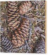 Spruce Cones Wood Print
