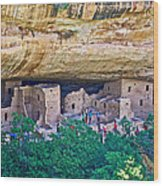 Spruce Tree House On Chapin Mesa In Mesa Verde National Park-colorado  Wood Print