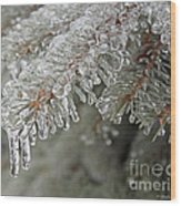 Spruce Under Glass Wood Print